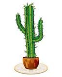 Cactus in bloempot stock illustratie