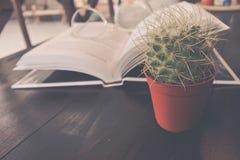 Cactus, boek en de glazen conceptuele foto over kennis a Royalty-vrije Stock Afbeelding