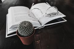 Cactus, boek en de glazen conceptuele foto over kennis a Stock Afbeeldingen