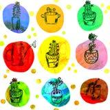 Cactus card  with circles cartoon Stock Photography