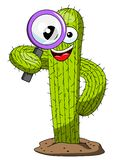 Cactus character mascot cartoon magnifying glass vector isolated. On white stock illustration