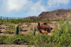 Cactus classique Route 66 de voiture de désert de l'Arizona Images stock