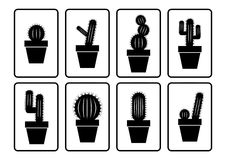 Cactus collection Royalty Free Stock Images