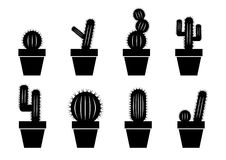 Cactus collection. On a white background stock illustration