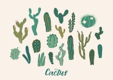 Cactus collection set. Vector illustration. Design element Stock Photos