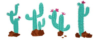 Cactus Collections Set. Cacti plant, vector stipple hand drawn doodle color concept. Wild desert cactuses with flowers and stones vector illustration