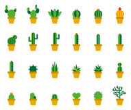 Cactus Colored FLat Icons Stock Photography