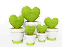 Cactus come cuore Immagini Stock Libere da Diritti