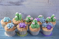 Cactus cupcakes. For children party stock photos