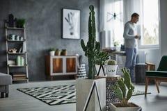 Cactus décoratif dans le pot simple image stock
