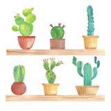 Cactus d'aquarelle dans des pots sur l'étagère Photos libres de droits