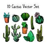 Cactus d'isolement tirés par la main réglés Image libre de droits