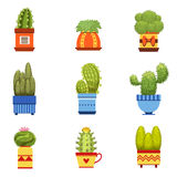 Cactus dans l'ensemble de pot Image libre de droits