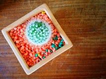 Cactus dans les pots Photo stock