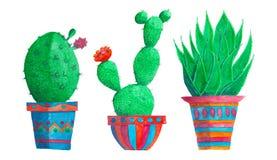 Cactus dans une rangée d'isolement au-dessus du blanc Photo stock