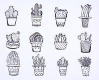 Cactus de griffonnage desing Photo stock