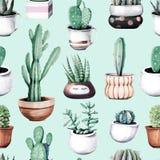 Cactus de la acuarela en modelo inconsútil del jardín tropical del pote libre illustration