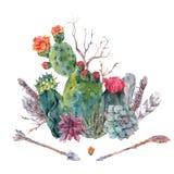 Cactus de la acuarela, succulent, flores ilustración del vector