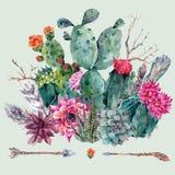 Cactus de la acuarela, succulent, flores libre illustration