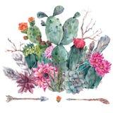 Cactus de la acuarela, succulent, flores Foto de archivo
