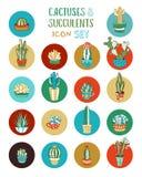 Cactus de la historieta del vector y sistema suculento del icono Fotografía de archivo