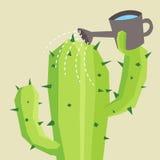 Cactus de riego Fotografía de archivo