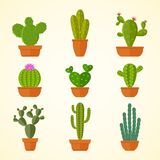 Cactus decorative home plant in pots flat vector icons. Cactus flora flower, flowerpot green and houseplant illustration Stock Photo
