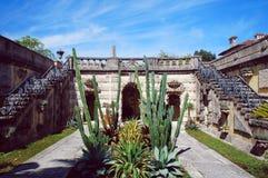 Cactus dei giardini di Vizcaya della villa Fotografia Stock Libera da Diritti
