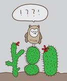 Cactus del soporte del búho Imagenes de archivo