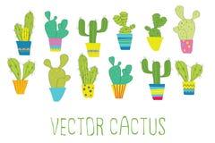Cactus del vector Imágenes de archivo libres de regalías