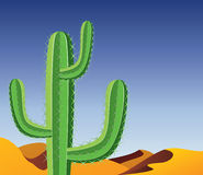 Cactus in desert Stock Photos