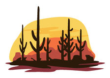 Cactus and Desert Stock Images