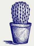 Cactus in desert. Doodle style Royalty Free Stock Photography