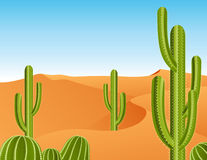 Cactus in the desert Stock Photos