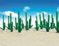 Cactus on desert with background of blue sky Stock Image