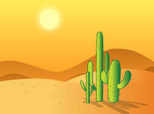 Cactus desert Royalty Free Stock Photography