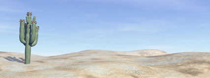 Cactus in the desert - 3D render. Cactus in the desert by blue day - 3D render Stock Photos