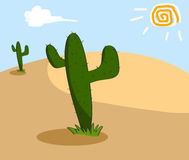 Cactus in desert. Cactus grows in the arid desert Royalty Free Stock Photography
