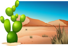A cactus at the desert. Illustration of a cactus at the desert on a white background Royalty Free Stock Image