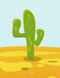 Cactus in Desert Stock Image