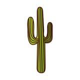 Cactus desert plant icon Stock Images