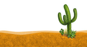 Cactus desert scene. Representing a dry arid sand horizon environment as a symbol of hot summer weather Royalty Free Stock Image