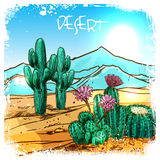 Cactus In Desert Sketch Royalty Free Stock Photography