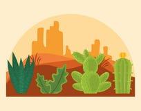 Cactus in desertscapelandschap vector illustratie