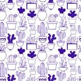 Cactus Dirigez la configuration sans joint décorative Images libres de droits