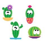 Cactus divertidos de la historieta Fotografía de archivo