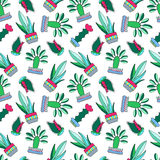 Cactus doodle  illustration on white background. Green plants pattern tile. Royalty Free Stock Photo