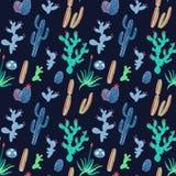 Cactus e succulenti di vettore su fondo nero Fotografia Stock