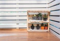 Cactus ed aloe vera su uno scaffale Fotografia Stock