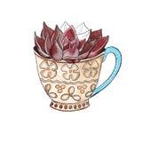 Cactus in een kop watercolor Stock Afbeelding